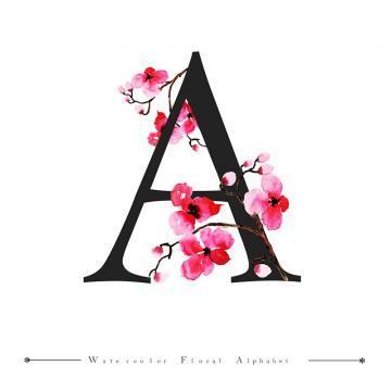 """frases – letra """"A"""""""