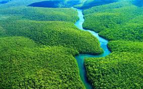 AMAZÔNIA – Mitos, inverdades e omissões.