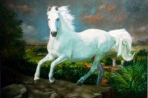 Um velho sábio e seu cavalo branco.